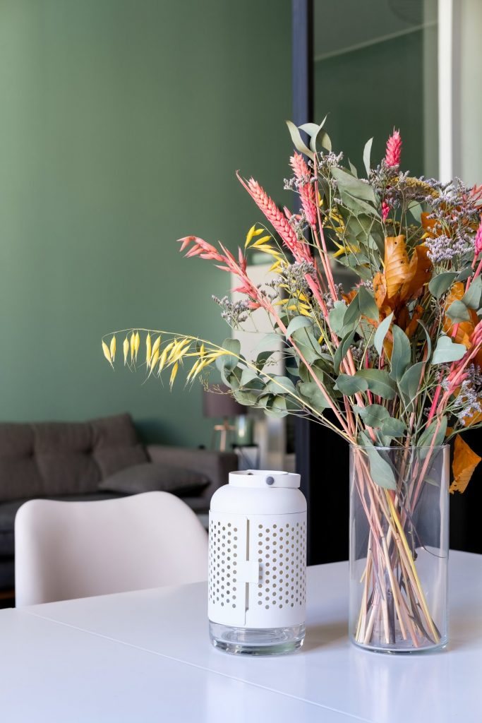 Appartement Canut.croix Rousse. Marlene Reynard.architecture Interieur. Decoration.cuisine.verriere.parquet (22)