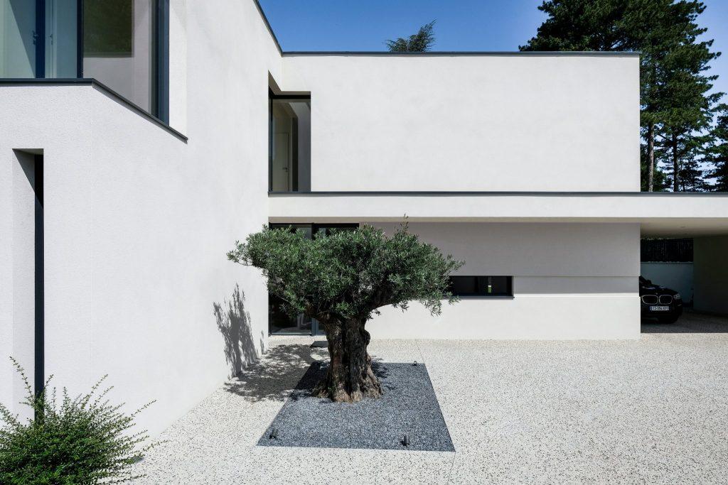 Maison Contemporaine.marlene Reynard.construction.neuve.piscine.toit Terrasse (3)